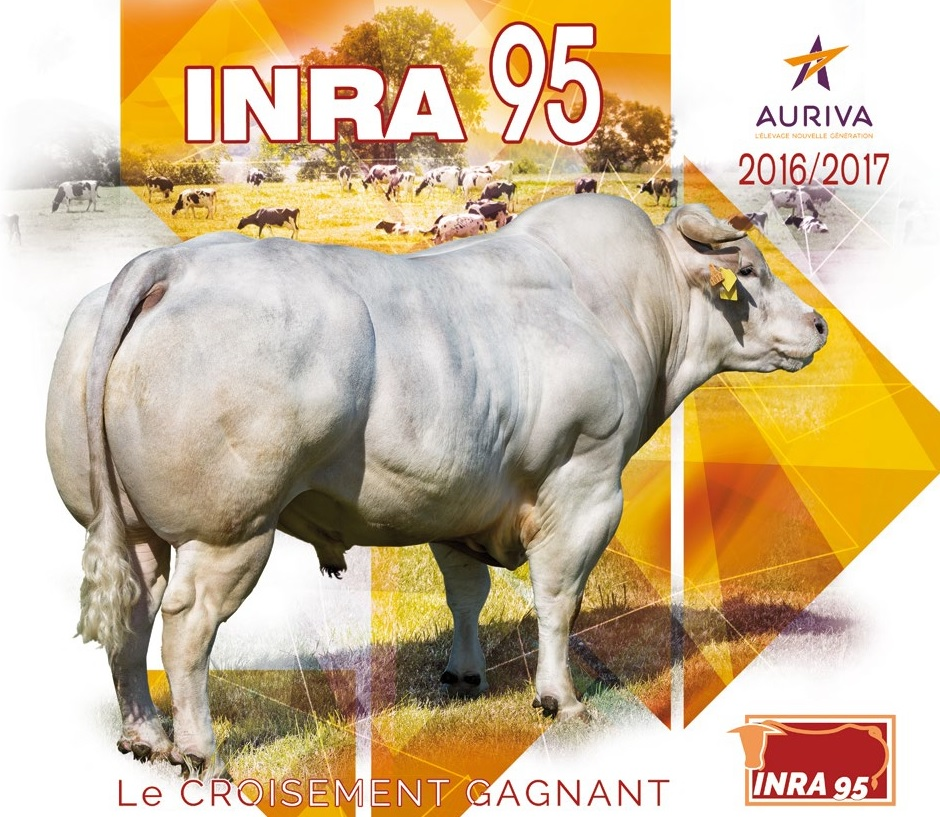 page couv inra95 2017